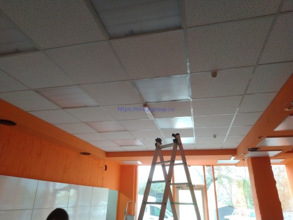 Электромонтаж в новом магазине Дикий Мед